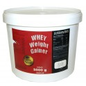 Activevites WHEY Weight Gainer - 5 кг